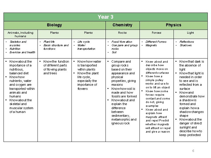 Year 3 Biology Chemistry Plants Rocks Physics Animals, including humans Plants Forces Light •