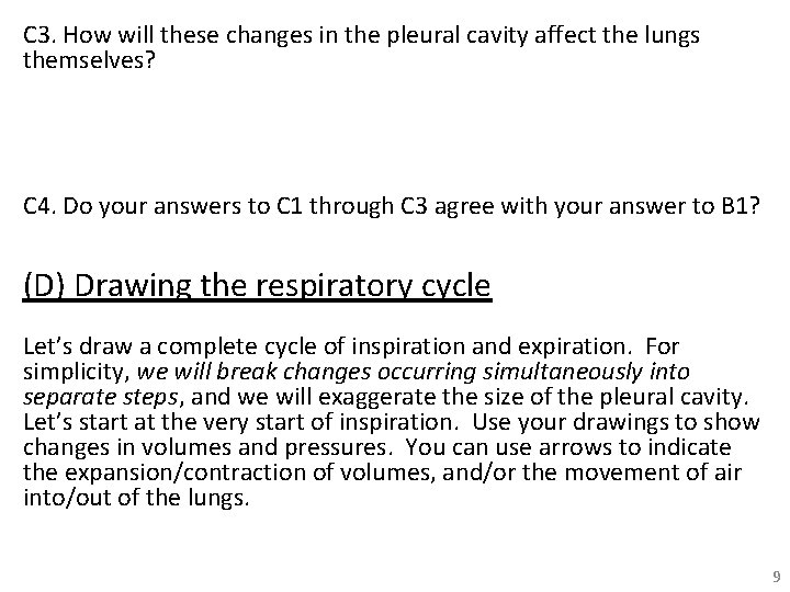 C 3. How will these changes in the pleural cavity affect the lungs themselves?