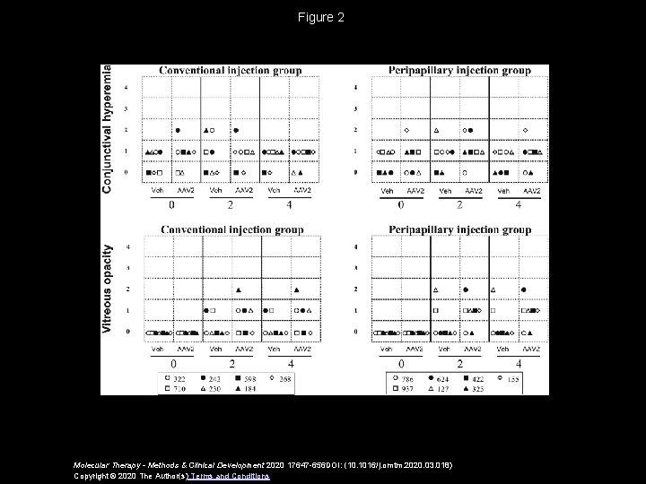 Figure 2 Molecular Therapy - Methods & Clinical Development 2020 17647 -656 DOI: (10.