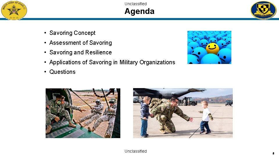 Unclassified Agenda • Savoring Concept • Assessment of Savoring • Savoring and Resilience •