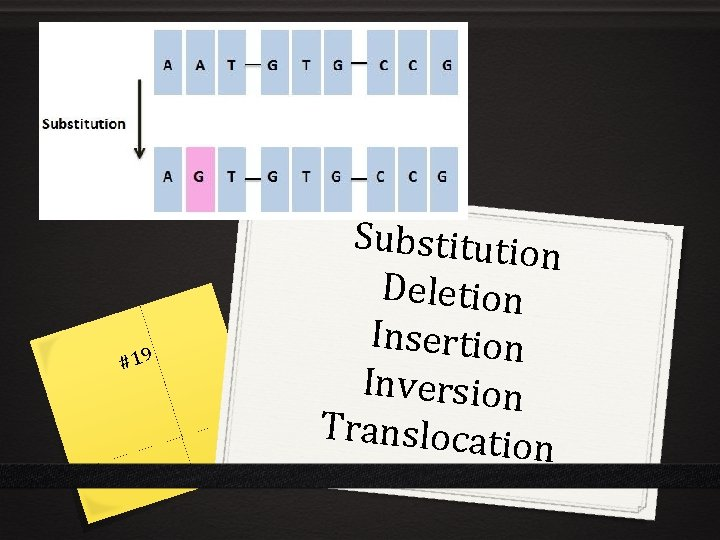 #19 Substitution Deletion Insertion Inversion Translocati on