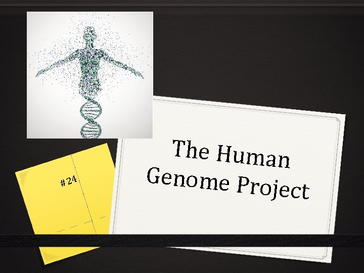 #24 The Human Genome Pro ject