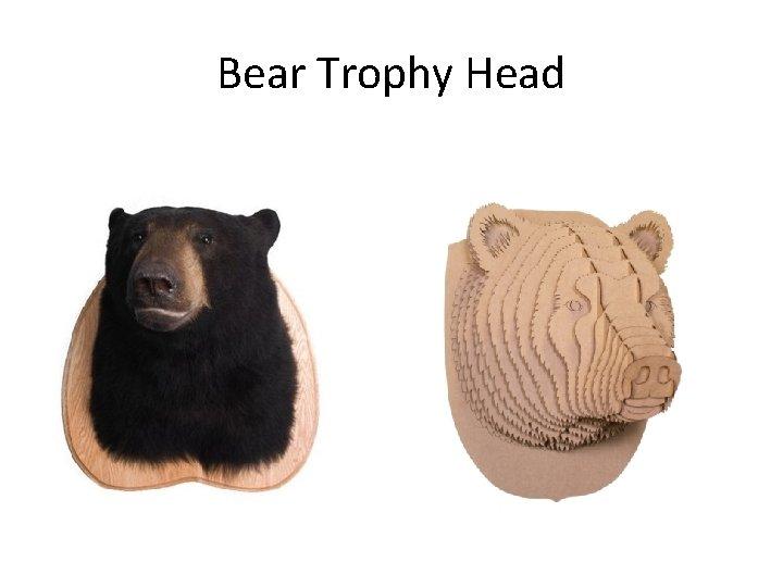 Bear Trophy Head