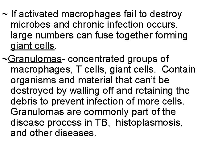 ~ If activated macrophages fail to destroy microbes and chronic infection occurs, large numbers