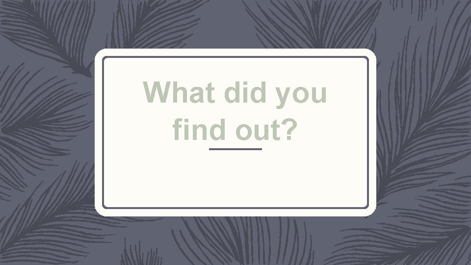 What did you find out?