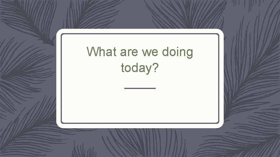 What are we doing today?