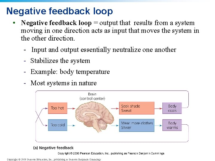 Negative feedback loop • Negative feedback loop = output that results from a system
