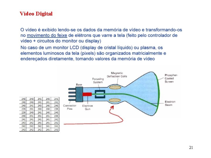 Vídeo Digital 21