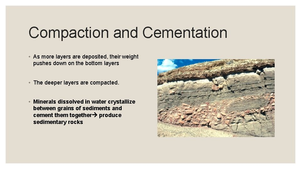 Compaction and Cementation ◦ As more layers are deposited, their weight pushes down on