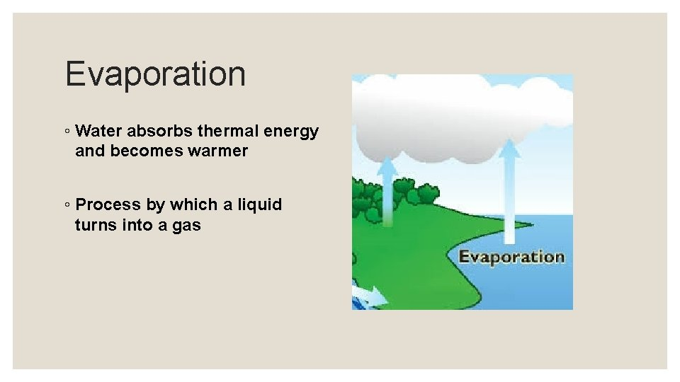 Evaporation ◦ Water absorbs thermal energy and becomes warmer ◦ Process by which a