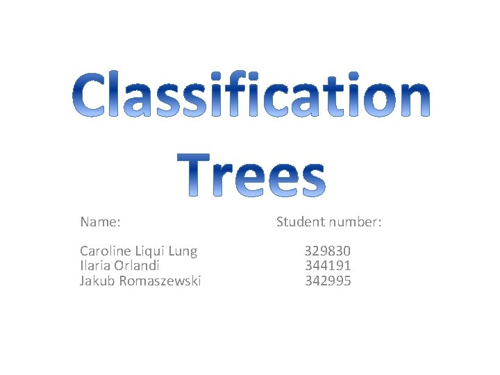 Name: Student number: Caroline Liqui Lung 329830 Ilaria Orlandi 344191 Jakub Romaszewski 342995