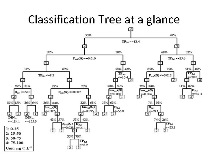 Classification Tree at a glance