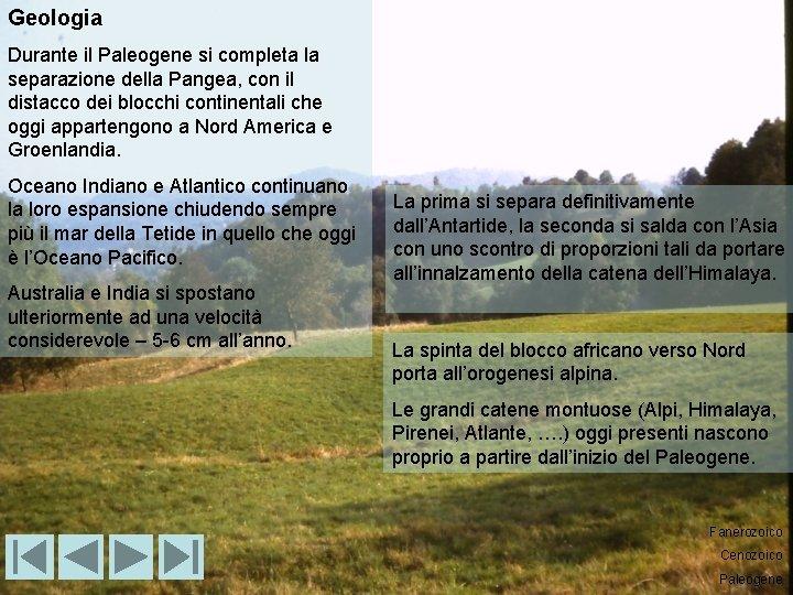 Geologia Durante il Paleogene si completa la separazione della Pangea, con il distacco dei