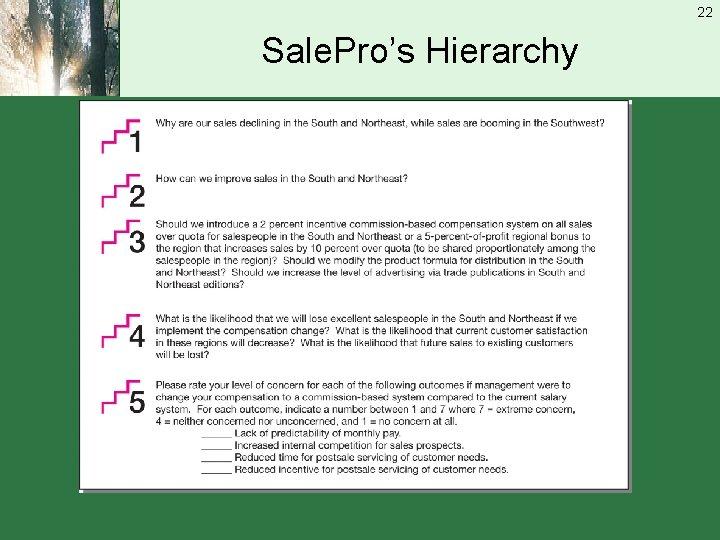 22 Sale. Pro's Hierarchy
