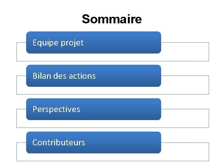 Sommaire Equipe projet Bilan des actions Perspectives Contributeurs