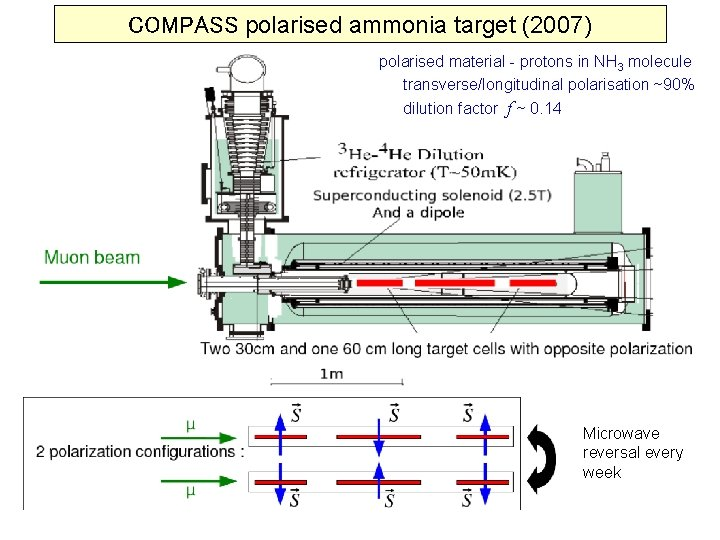 COMPASS polarised ammonia target (2007) polarised material - protons in NH 3 molecule transverse/longitudinal