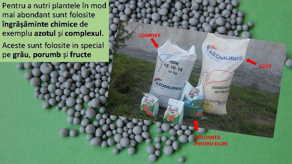 Pentru a nutri plantele în mod mai abondant sunt folosite îngrășăminte chimice de exemplu