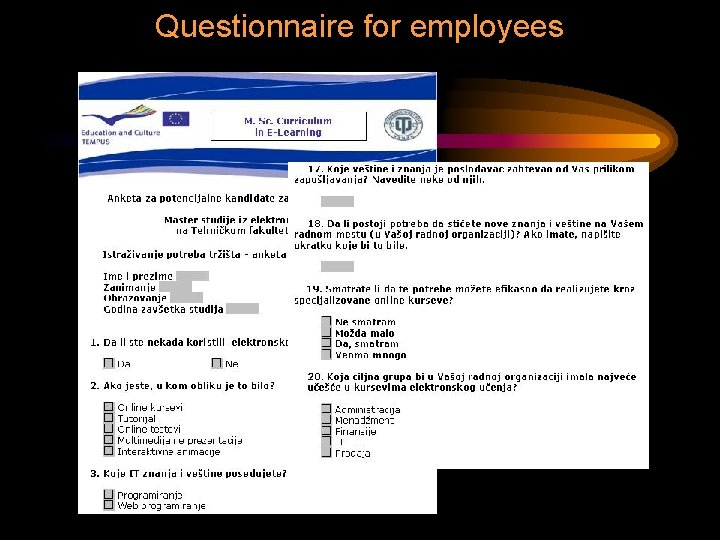 Questionnaire for employees