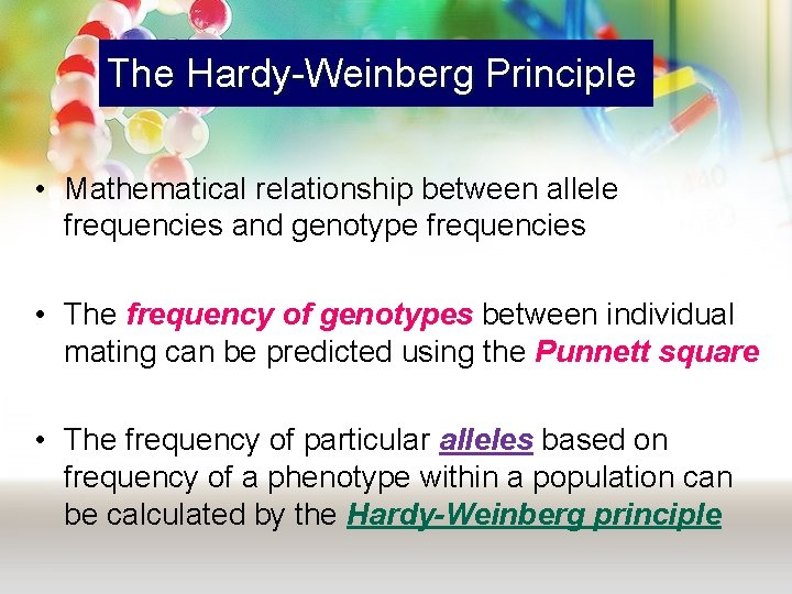The Hardy-Weinberg Principle • Mathematical relationship between allele frequencies and genotype frequencies • The