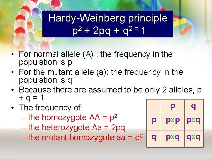 Hardy-Weinberg principle p 2 + 2 pq + q 2 = 1 • For