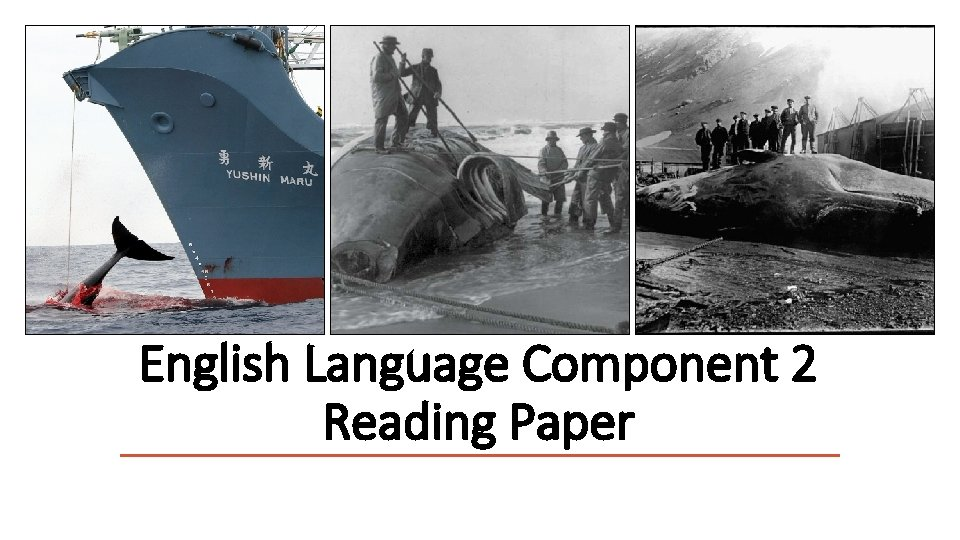 English Language Component 2 Reading Paper