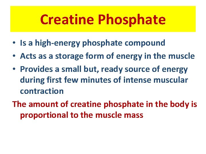 Creatine Phosphate • Is a high-energy phosphate compound • Acts as a storage form