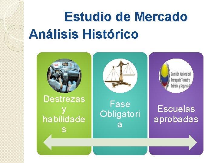 Estudio de Mercado Análisis Histórico Destrezas y habilidade s Fase Obligatori a Escuelas aprobadas