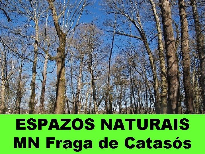 ESPAZOS NATURAIS MN Fraga de Catasós