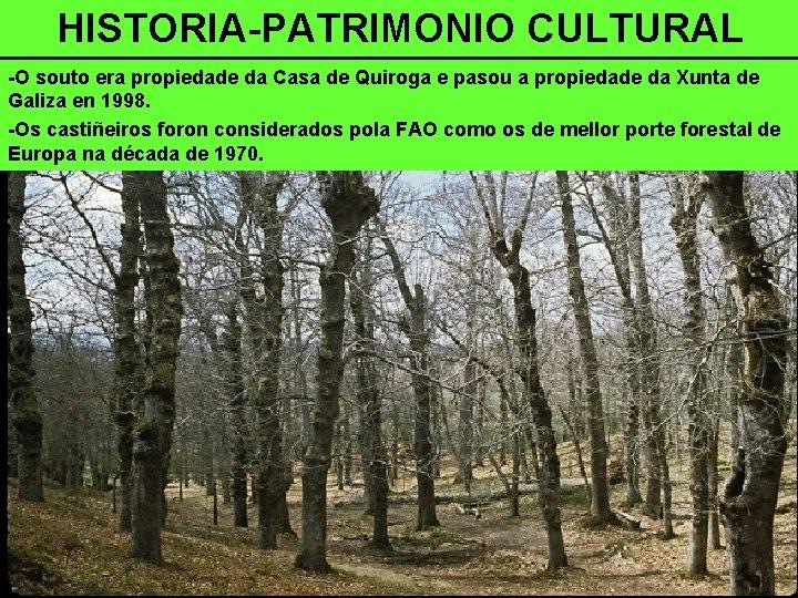 HISTORIA-PATRIMONIO CULTURAL -O souto era propiedade da Casa de Quiroga e pasou a propiedade