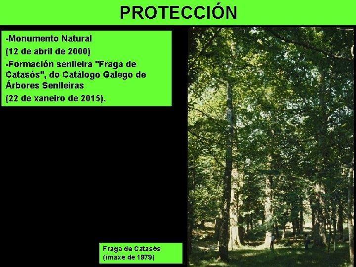 """PROTECCIÓN -Monumento Natural (12 de abril de 2000) -Formación senlleira """"Fraga de Catasós"""", do"""