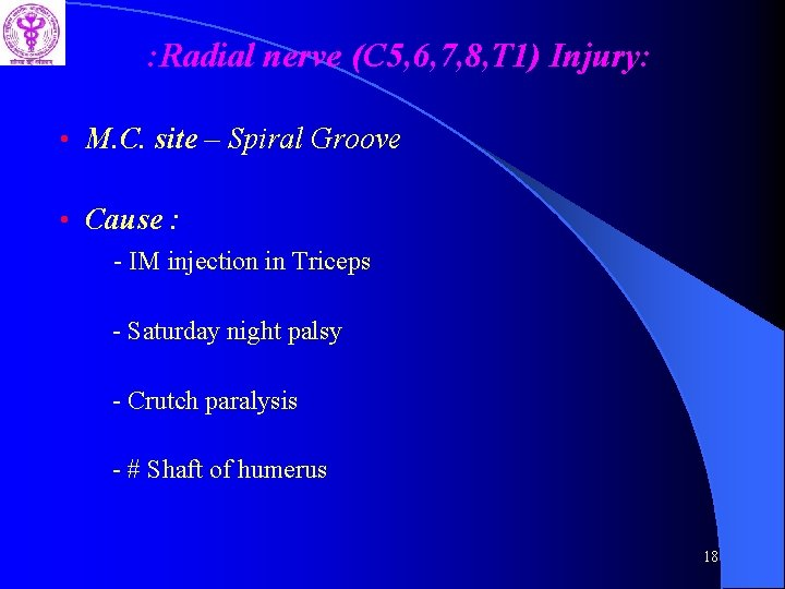 : Radial nerve (C 5, 6, 7, 8, T 1) Injury: • M. C.