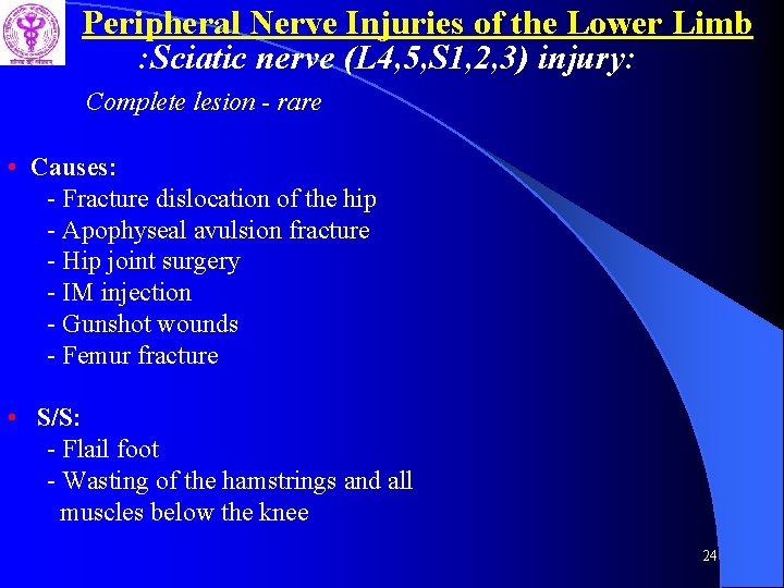 Peripheral Nerve Injuries of the Lower Limb : Sciatic nerve (L 4, 5, S