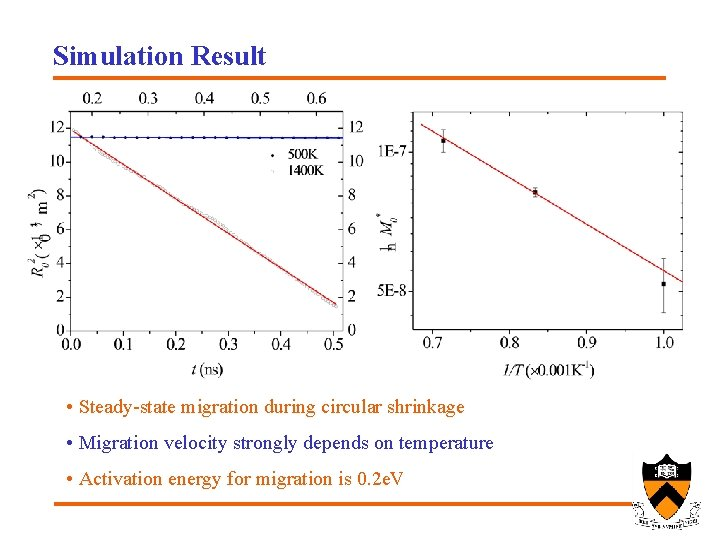 Simulation Result • Steady-state migration during circular shrinkage • Migration velocity strongly depends on