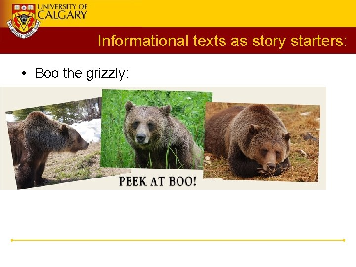 Informational texts as story starters: • Boo the grizzly: