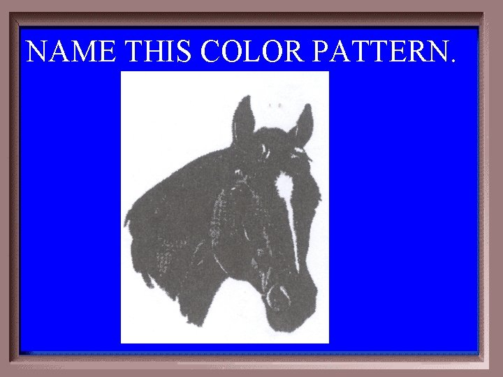 NAME THIS COLOR PATTERN. 1 -100