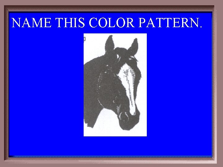 NAME THIS COLOR PATTERN. 1 -200