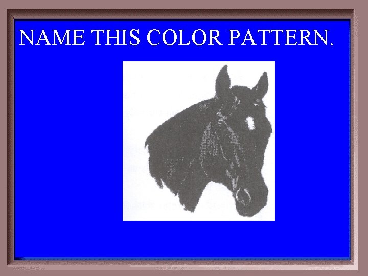 NAME THIS COLOR PATTERN. 1 -300
