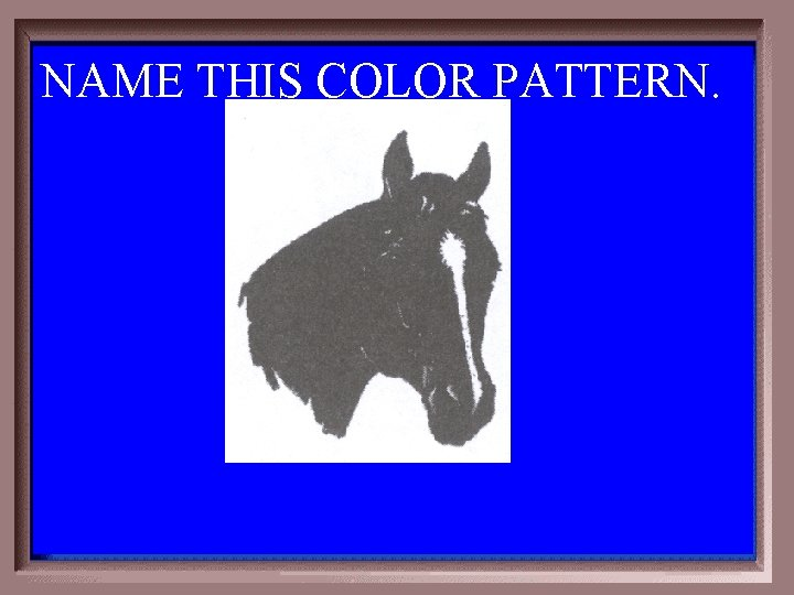NAME THIS COLOR PATTERN. 1 -400