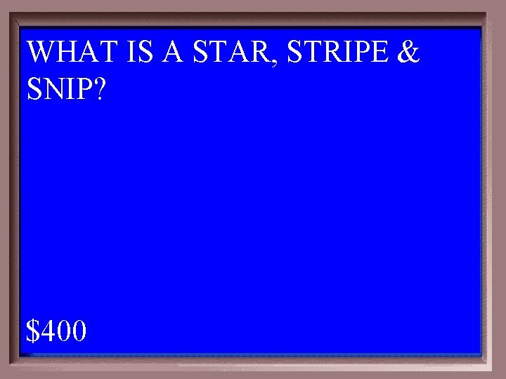 WHAT IS A STAR, STRIPE & SNIP? 1 - 100 1 -400 A $400