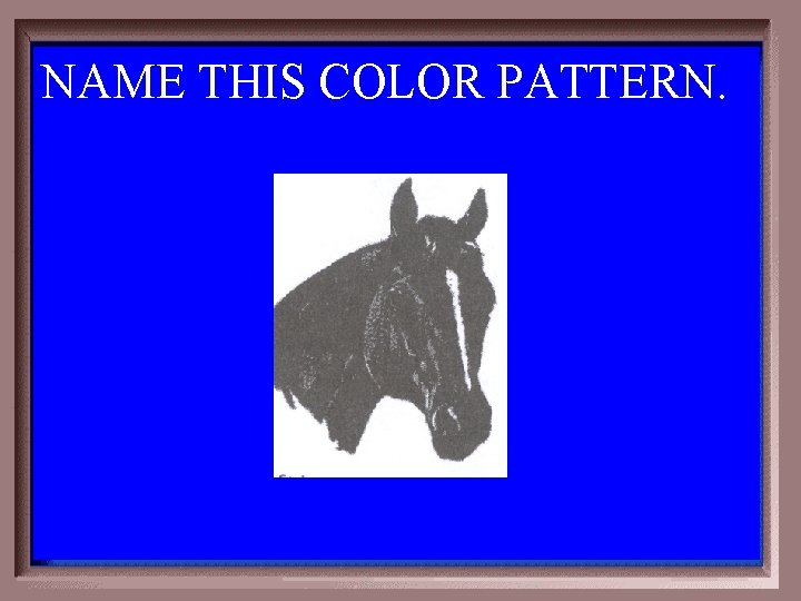 NAME THIS COLOR PATTERN. 1 -500