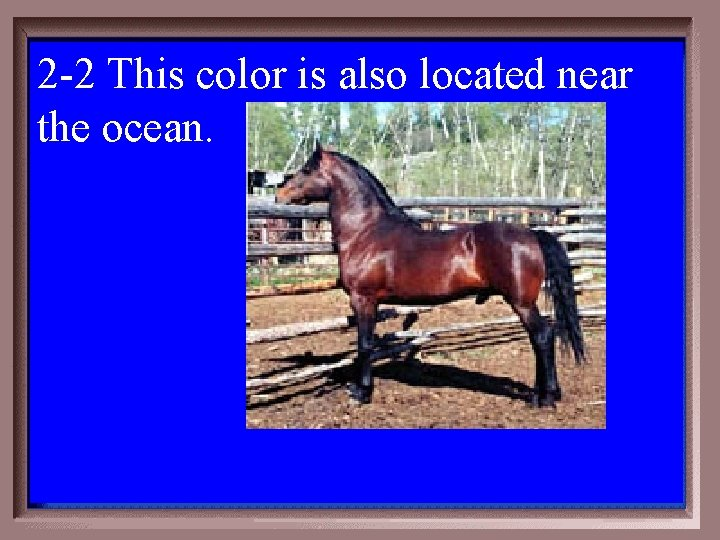 2 -2 This color is also located near the ocean. 2 -200