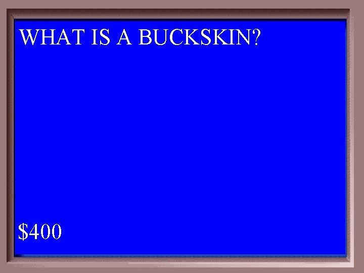WHAT IS A BUCKSKIN? 1 - 100 2 -400 A $400