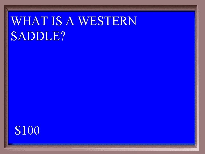 WHAT IS A WESTERN SADDLE? 1 - 100 3 -100 A $100