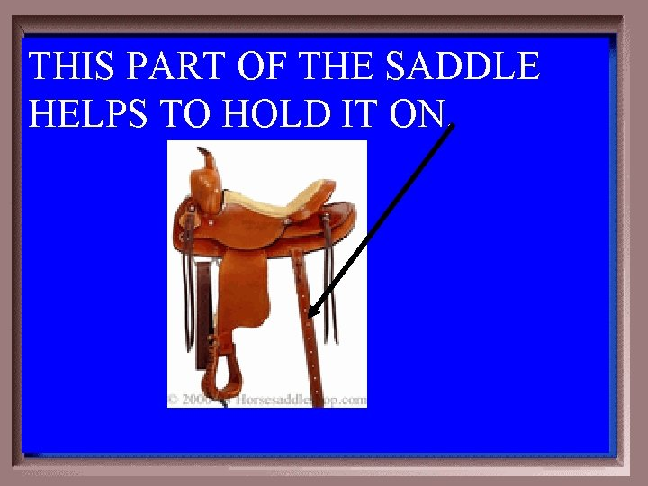THIS PART OF THE SADDLE HELPS TO HOLD IT ON. 3 -500