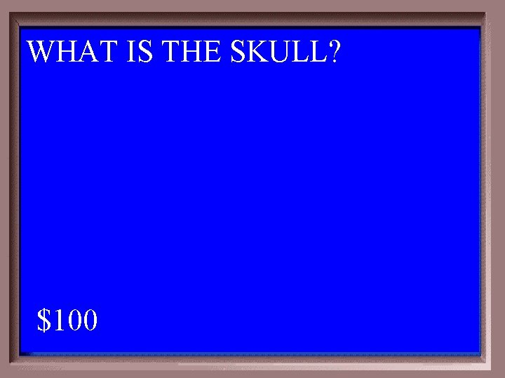 WHAT IS THE SKULL? 1 - 100 4 -100 A $100