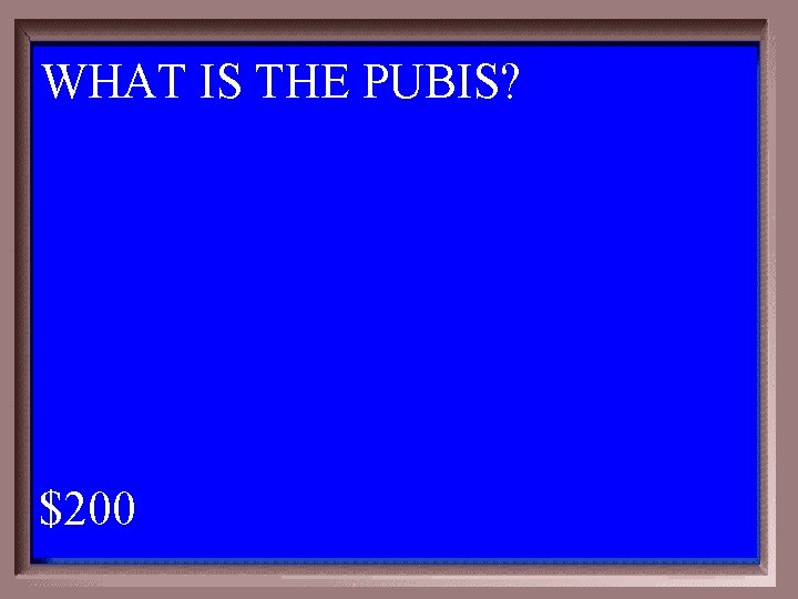 WHAT IS THE PUBIS? 1 - 100 4 -200 A $200