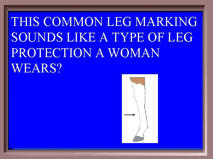 THIS COMMON LEG MARKING SOUNDS LIKE A TYPE OF LEG PROTECTION A WOMAN WEARS?