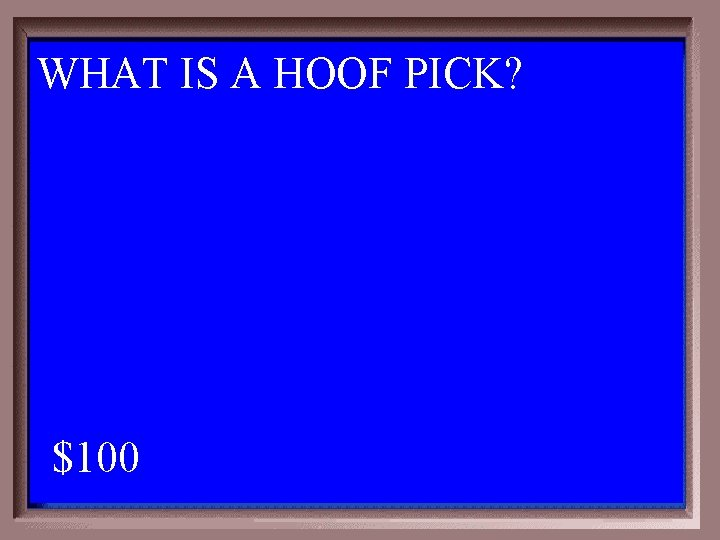 WHAT IS A HOOF PICK? 6 -100 A 1 - 100 $100