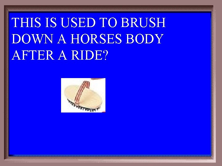 THIS IS USED TO BRUSH DOWN A HORSES BODY AFTER A RIDE? 6 -200