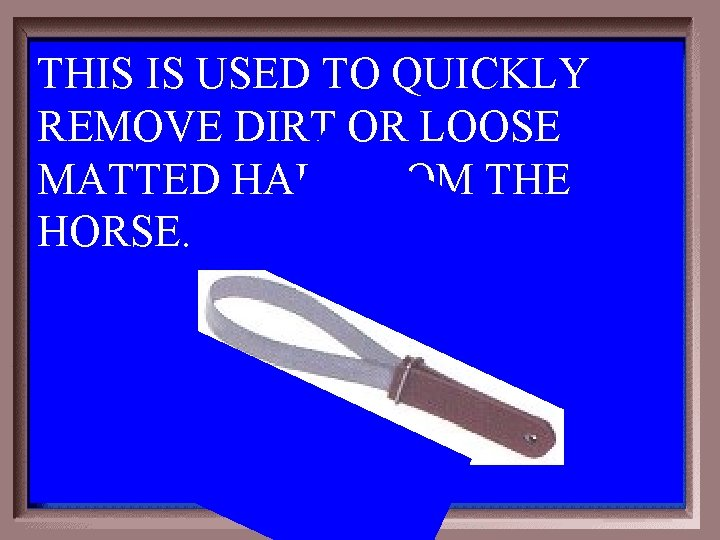 THIS IS USED TO QUICKLY REMOVE DIRT OR LOOSE MATTED HAIR FROM THE HORSE.
